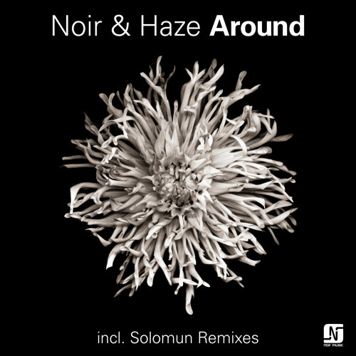 Artwork van Around (Solomun Vox Remix)