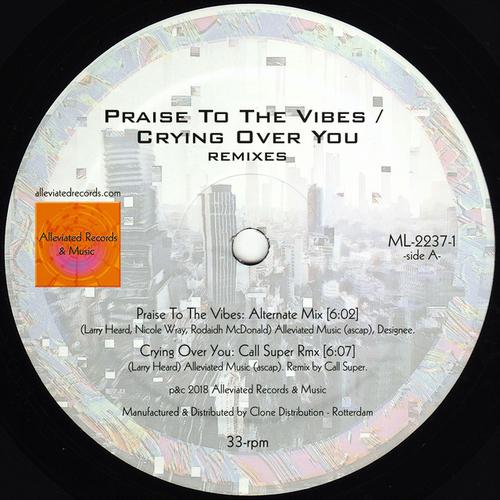 Artwork van Praise To The Vibes (Alternate Version)